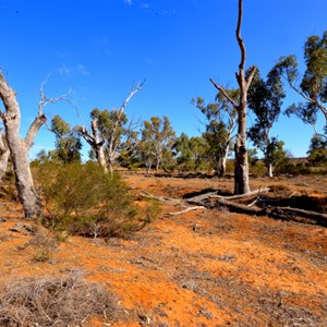 Cobb and Co Route - Broken Hill to White Cliffs