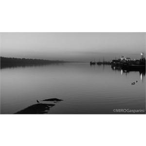 Silent Evening