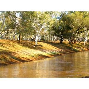 Sturt Creek