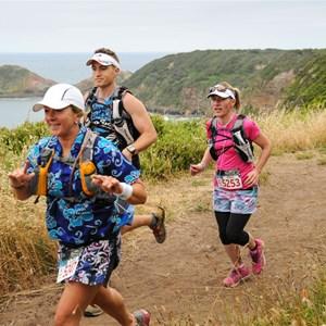Two Bays 56km Runners