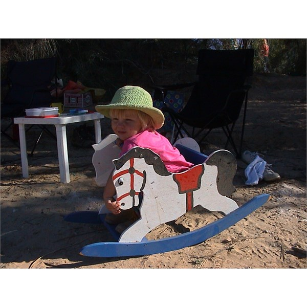 Rocking horse found on outstation ruins near Annandale