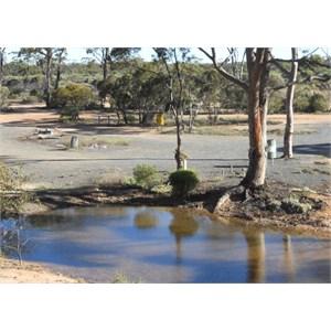 Camp area of Bromus Dam