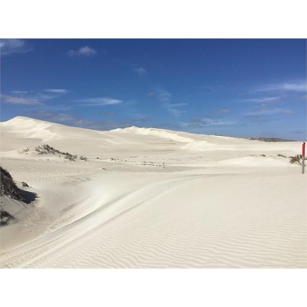 Sculpted sand dunes