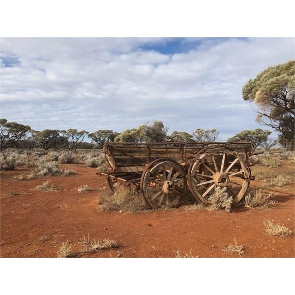 Yardea wagon