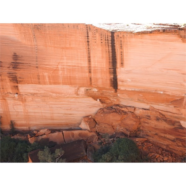 Kings Canyon canyon wall from top of rim.