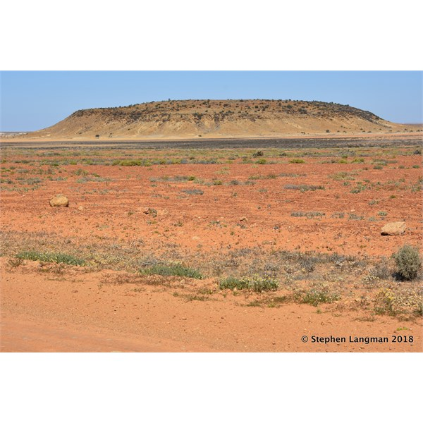 You never know what you will see next on the Oodnadatta Track