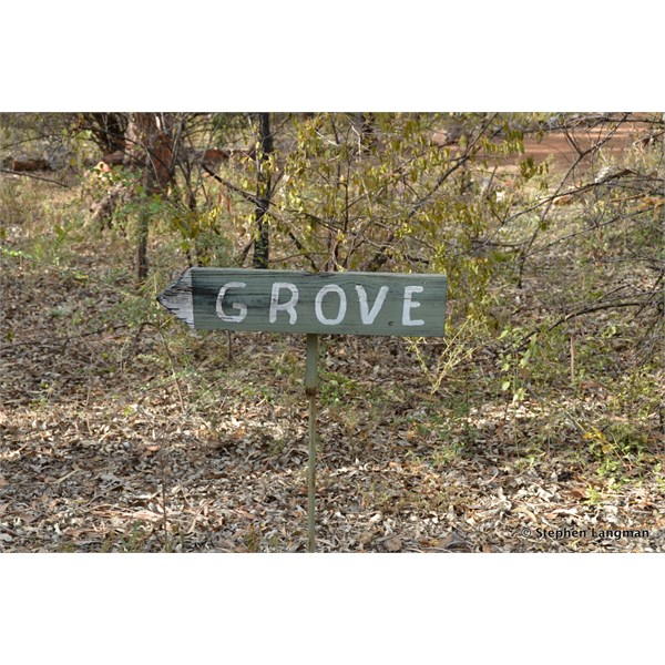 You can not miss the entrance to the Grove