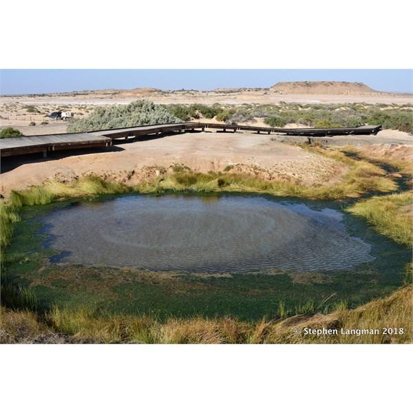 Mound Springs before Coward Springs