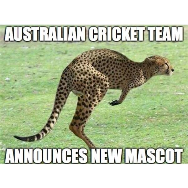 Aussie Cricket Mascot