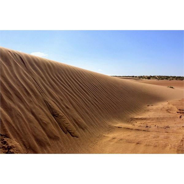 Dunes at Lake Frome