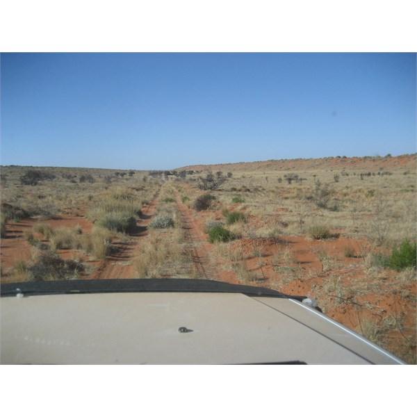 Colson Oil Well area