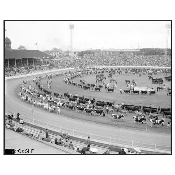 The Grand Parade at the Royal Agricultural Show in Brisbane, 1966
