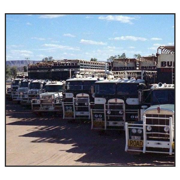 Buntine Fleet of Trucks