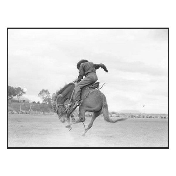 Steve Laird - Warwick Rodeo 1949
