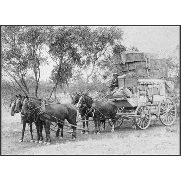 Cobb and Co coach  Richmond to Cloncurry run  driven by Mr Fred Richards 1906 crossing over the Gilliatt River Julia Creek to Cloncurry