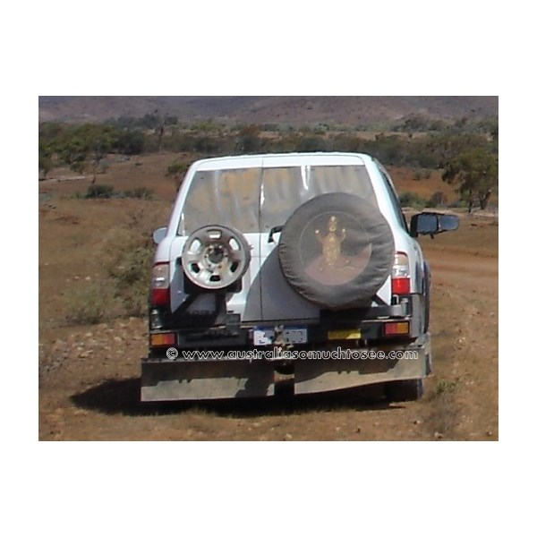 Clear plastic rear window stone protection