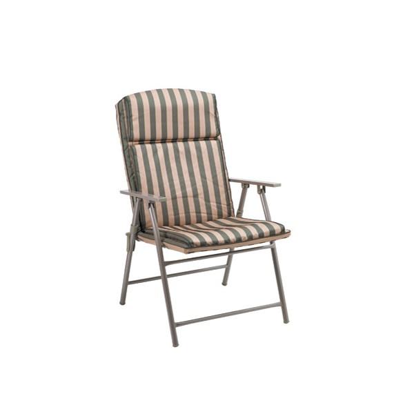 Coleman Steel Arm Folding Chair