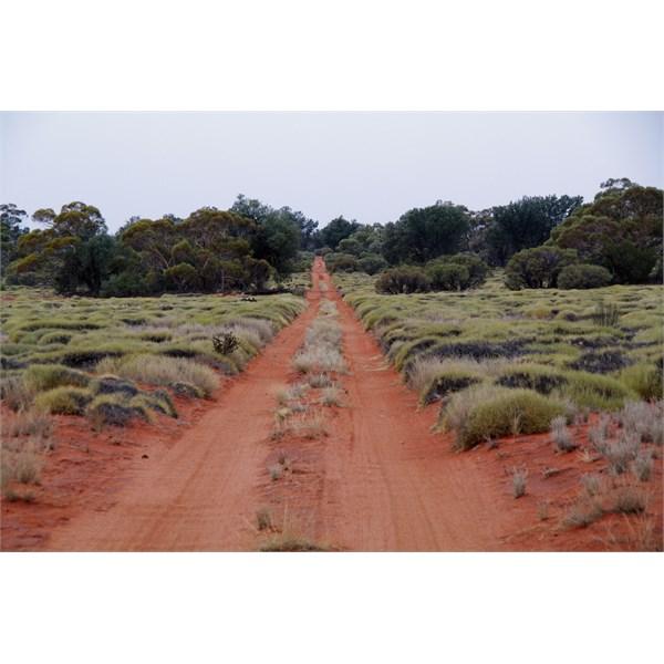 The Anne Beadell Highway