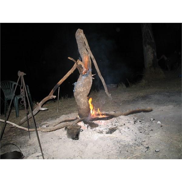 campfire entertainment