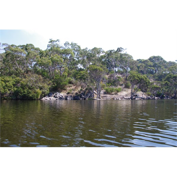 Looking over to the Western Side of Chapman River