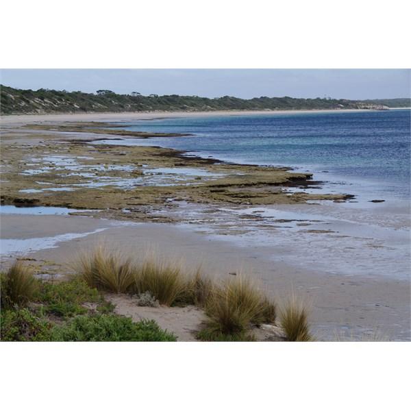 Browns Beach