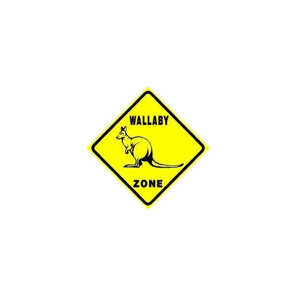 Wallaby crossing! Caution please drivers!