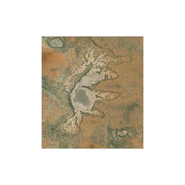 Animal shaped lake