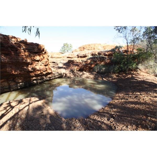 Waterhole Carnegie used east of Mount Wilson