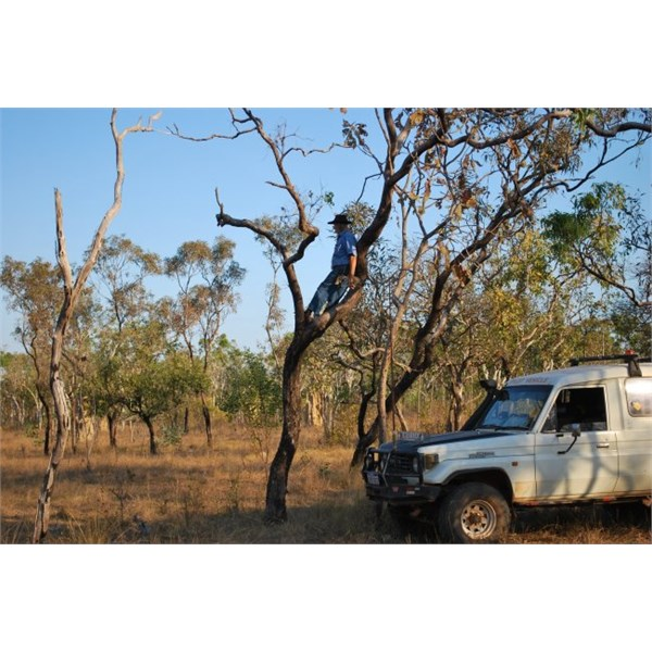 The matching photo 2011 on Mt Bundy Station near Adelaide River and he's not wearing a slouch hat,