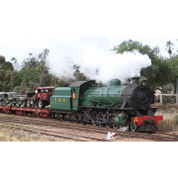 troop train 2009