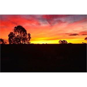 Tjukaylira Sunset