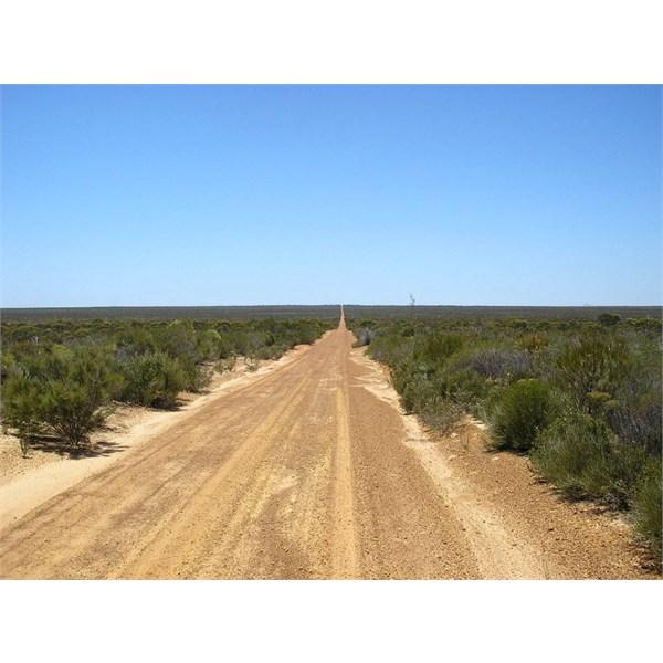 Frank Hann NP road