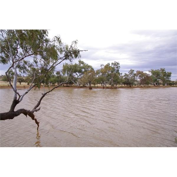 Eringa Waterhole is a top location to camp