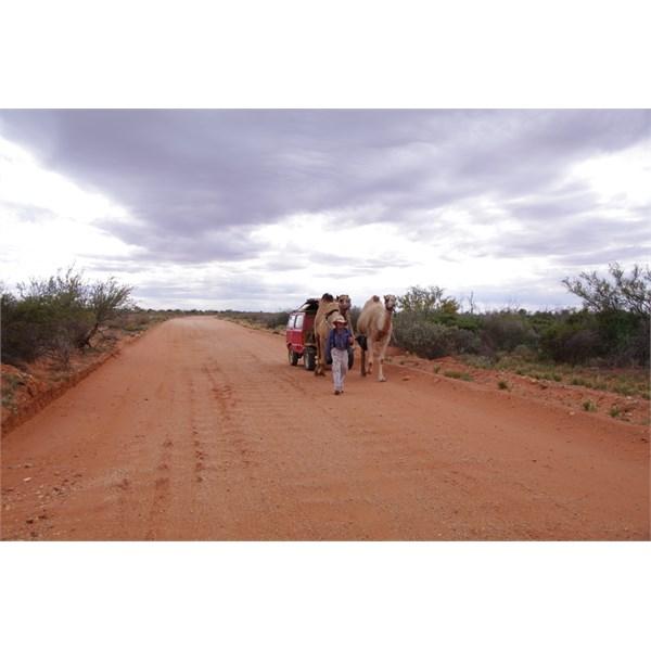 Heading north of Oodnadatta