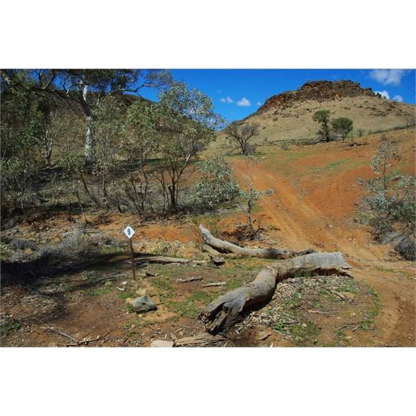 The Fantastic Flinders Ranges