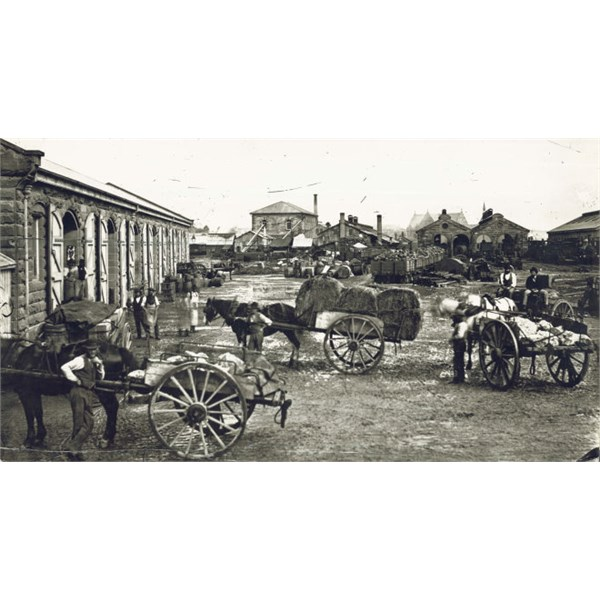 Goods yard, depot and machine shop at second Sydney Railway Station, c.1874