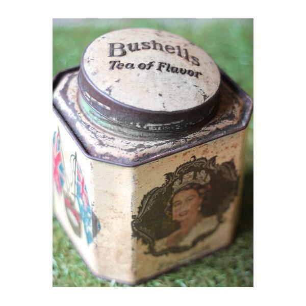 Bushells tea tin