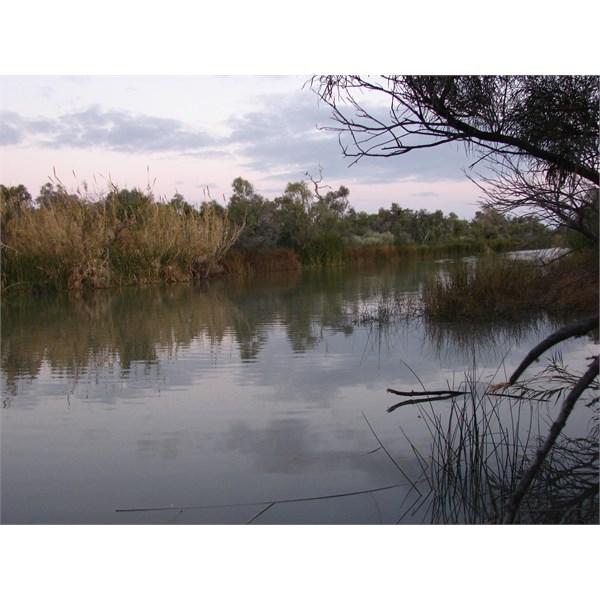 Waterhole @ Muloorina, on Frome River SA