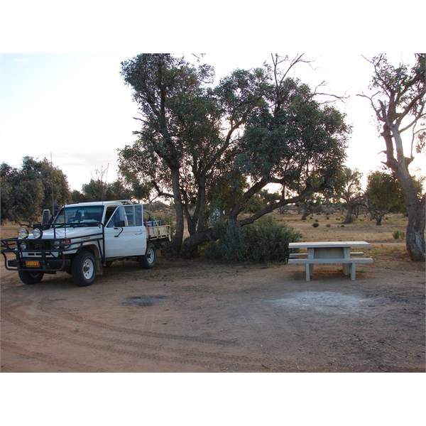 Part of Muloorina Campground