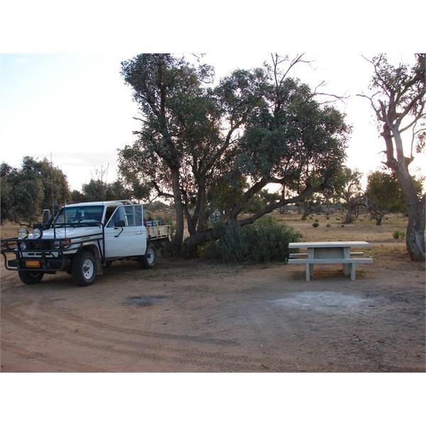 Part of Muloorina Campground