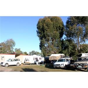 Chinchilla Mobile Park