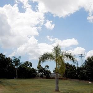 Grass sites