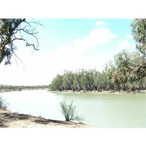 Murray River - Baggs Band