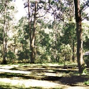 O'Toole camp