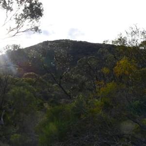 Scrubby Peak Camp