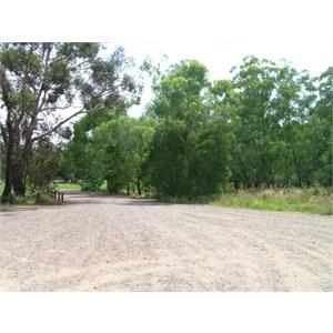 Everard park