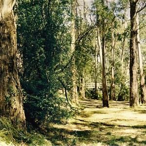 Millgrove