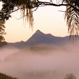 Mt Warning seen from Hillcrest