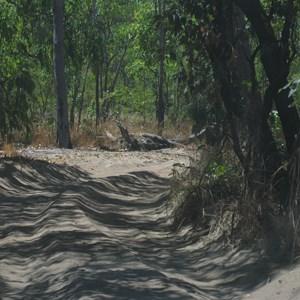 Sandy track last few km