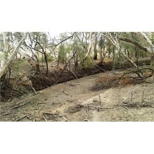 A dry Macquarie River